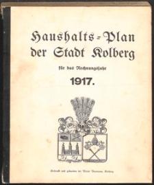 Haushalts-Plan der Stadt Kolberg für das Rechnungsjahr 1917