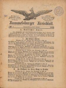 Rummelsburger Kreisblatt 1893