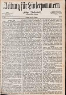 Zeitung für Hinterpommern (Stolper Wochenblatt) Nr. 13/1877