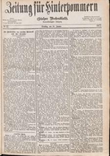 Zeitung für Hinterpommern (Stolper Wochenblatt) Nr. 17/1877