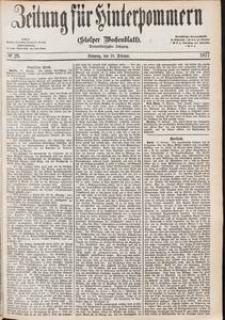 Zeitung für Hinterpommern (Stolper Wochenblatt) Nr. 28/1877