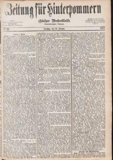 Zeitung für Hinterpommern (Stolper Wochenblatt) Nr. 29/1877